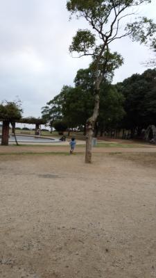 20141102_170606_small.jpg