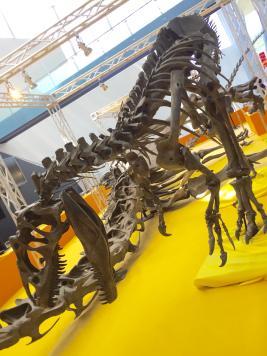 恐竜展_small.jpg
